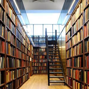 Библиотеки Снежинска