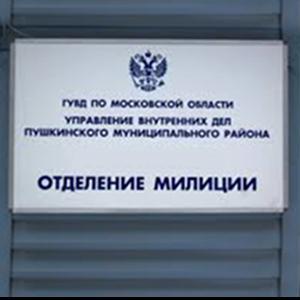 Отделения полиции Снежинска