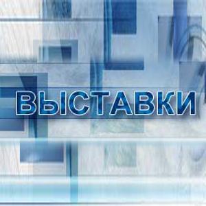 Выставки Снежинска